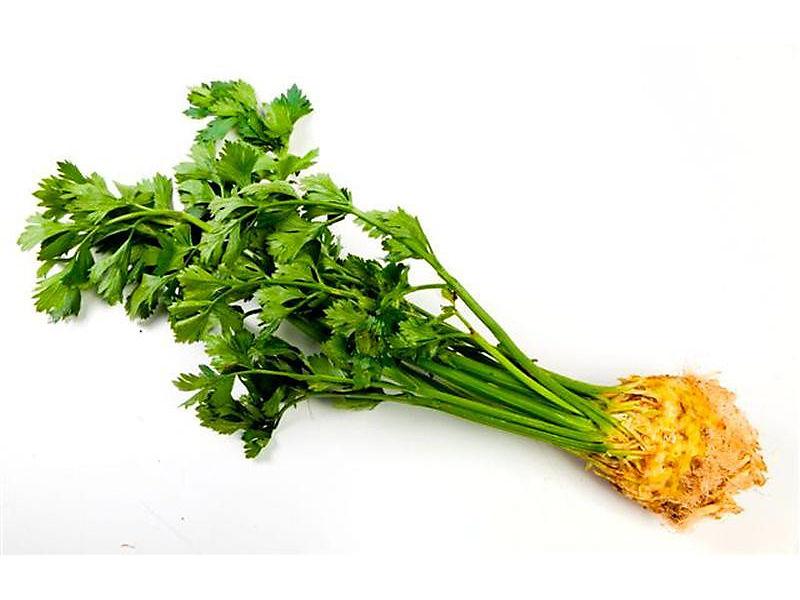 Celer s natí 1ks