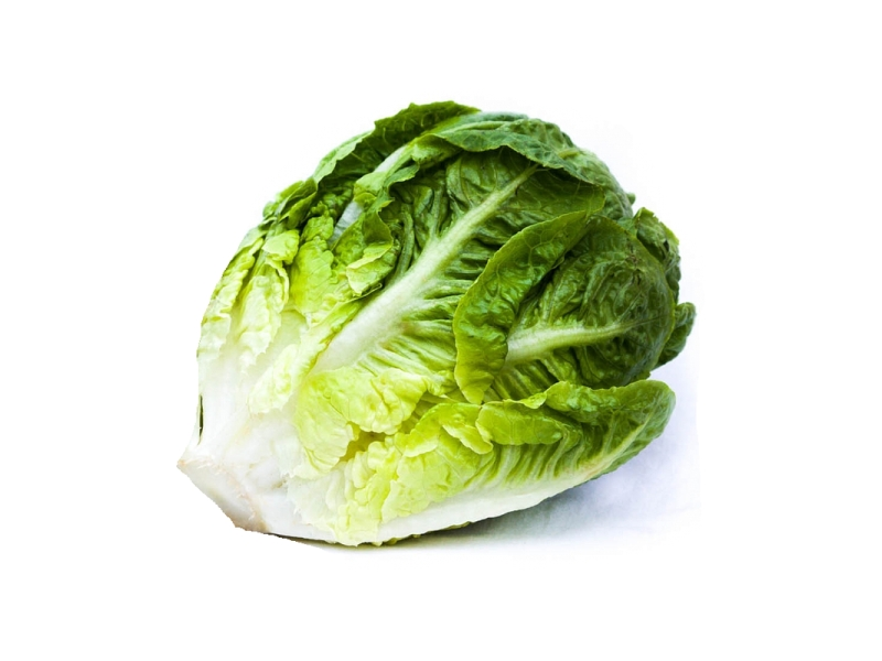 Český salát Little Gem zelený (2x 150g)