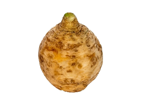 Celer bulvový praný 2kg (cca 3-4ks)