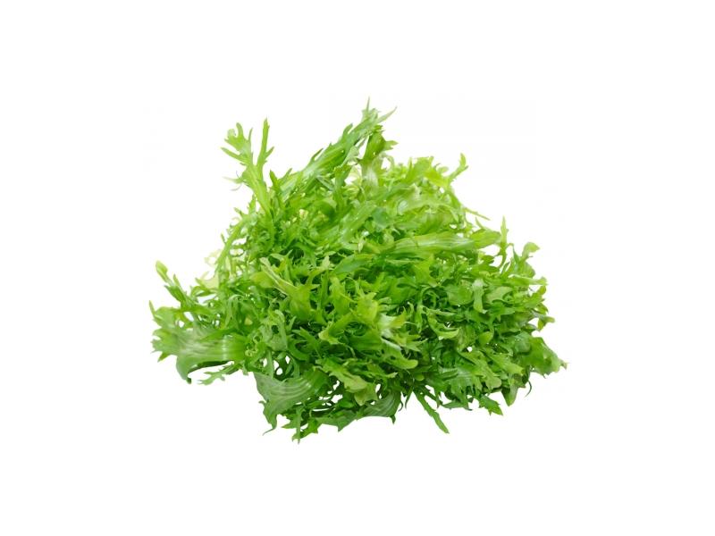 Salát Frisee bělený čerstvý (200g+) 1ks
