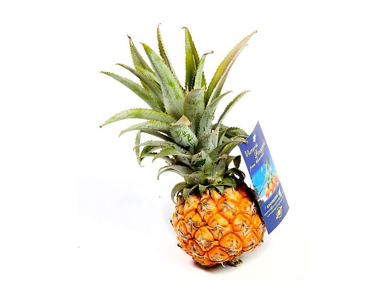 Ananas baby Eat me čerstvý (300g+) 1ks