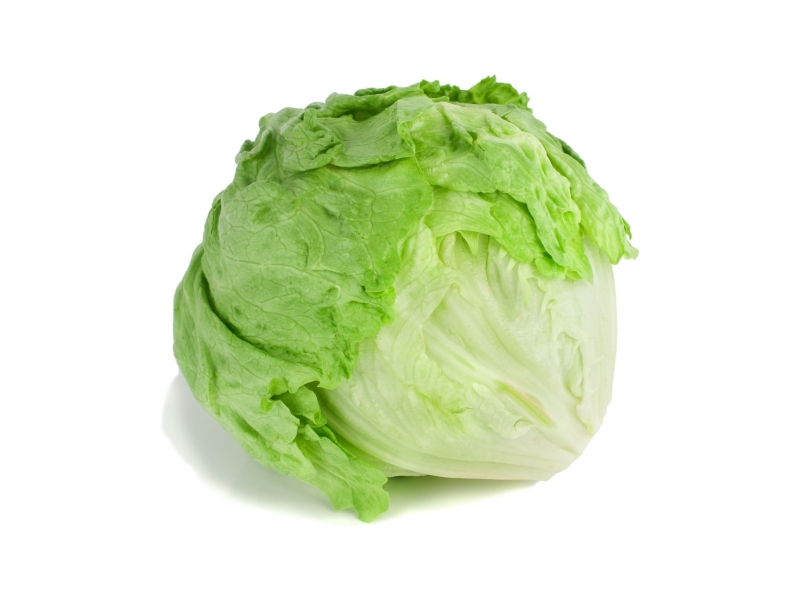 Salát ledový 1ks