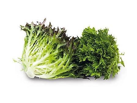 Salát Crispy zelený čerstvý (200g) 1ks