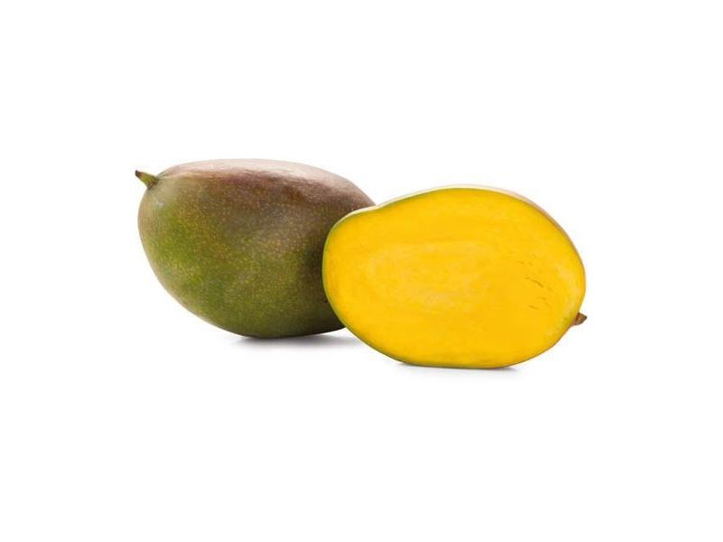 Mango Kent čerstvé (500g+)
